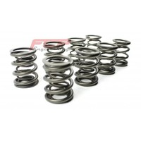 Audi / VW 1.9 TDi (not PD/CR) FCP racing valve double spring kit