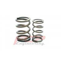 Audi 100 200 2.0 2.2 10V 5 cylinder FCP racing valve double spring kit