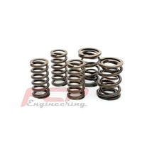 Audi S6 S4 RS4 2.7T 2.8 3.0 30V FCP racing valve double spring kit