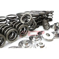 Audi S2 RS2 S4 S6 2.2 20V FCP racing valve springs + retainers